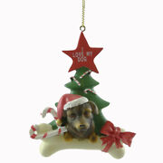 Personalized Ornaments Rottweiler Resin Dog Christmas Tree C3346