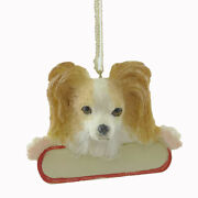 Personalized Ornaments Papillon Resin Christmas Puppy Dog 21860a