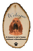 Outdoor Welcome Sign Tp - Bloodhound 94073