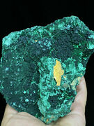 585g Natural Green Acicular Malachite Crystal Mineral Specimen/ From Congo