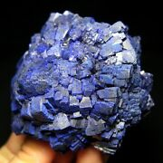 Giant Dark Blue Azurite Crystal Flower In Great Condition Yangchun China-e1873