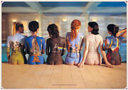 Pink Floyd - Music Poster The Back Catalog / Album Covers Size 36 X 24