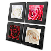 Floral Love Roses Natural Multi Canvas Wall Art Picture Print Va