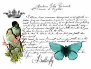 Vintage French Butterfly Bird Label Furniture Transfers Waterslide Decals Mis593