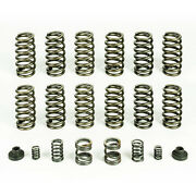 3000/4000 Rpm Governor Spring Kit And 12 60 Valve Springs For 94-98 Dodge Cummins