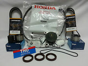 2003-2004 Honda Pilot Genuine Timing Belt And Drive Belt And Npw Water Pump Kit