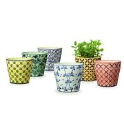 Pretty Set of 6 Ceramic Small Plant Pots 5 Inches Planters Indoor/Outdoors, New