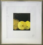 Donald Sultan Five Lemons A Pear And An Egg 1994   Signed Print   Gallart