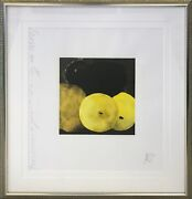Donald Sultan Five Lemons A Pear And An Egg 1994 | Signed Print | Gallart