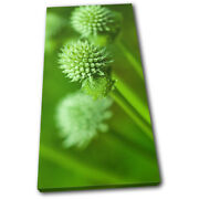 Plant Green Green Floral Single Canvas Wall Art Picture Print