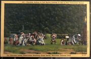 Mint Usa Ppc Picture Postcard Native American Cherokee Indian Full Costume Dance