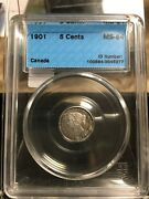 1901 Cccs Graded Canadian Small Silver Five Cent, Ms-64