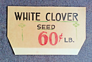 Vintage 1930's White Clover Seed Advertising Hand Painted Display Store Sign 2