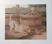 Jim Lamb Yellow Labs Print The Companions Limited Edition 450 Of 950