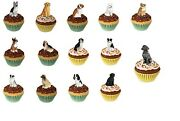 Adorable Pupcake Dog Trinket Box Figurine Choose Your Breed Great Gift