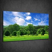 Beautiful Green Forest Blue Cloudy Sky Box Canvas Print Wall Art Picture