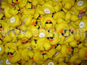300pcs Race Duck With Sunglass, Float Duckies Weigthed Rubber Duck Race W Number
