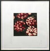 Donald Sultan Roses 1992 | Hand Signed Print | Framed | Others Avail | Gallart