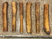 6 Jumbo Beef Bully Sticks Dog Treats Chew 24 Count Usa Made Thick Natural