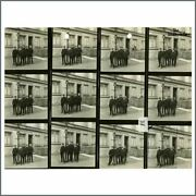 The Undertakers 1960s Astrid Kirchherr Vintage Contact Sheet Germany