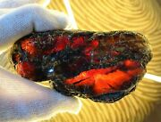 Sale - Red And Gold Amber, Mexico-chiapas Rough/natural - 740 G, 7 Pcs
