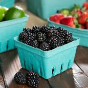 Green Molded Pulp Berry / Produce Basket