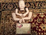 Sold Out/discontinued Le Charlotte Diy Doll Kit 18 Reborn Doll Supplies
