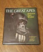 The Great Apes National Geographic Society Hardcover Dust Jacket 1993