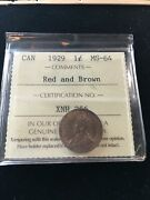 1929 Iccs Graded Canadian Small One Cent Ms-64