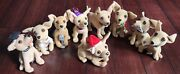 Lot Of 9 Taco Bell Chihuahua Plush Dogs - Great Condition But No Longer Talk