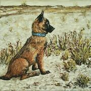 Belgian Malinois In The Sand, Fine Art Painting Dog 12 X 12