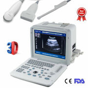 12 Ultrasound Scanner Micro-convex/tv/linear 3 Probe Obstetric Machine Medical
