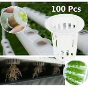 100/50/20 Net Pot 35-50mm Vegetable Plastic Cup Slotted Soilless Culture Planter