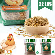 22 Lbs Dried Mealworms Non Gmo -chicken Treats Duck Feed Organic Meal Worms Bulk