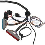 Wiring Harness Stand Alone Ls1-4l60e For 97-06 98 99 00 Ls Swaps Dbc 4.8 5.3 6.0