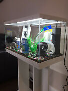 Brand New Fish Tank And Stand Heater Filter And Water Treatment Included