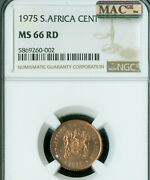 1975 South Africa Cent Ngc Ms66 Rd Mac Spotless Only 1 Finer Rare In Red