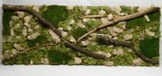 Free Shipping Preserved Moss Wall Art With Branches On Canvas 18 X 47