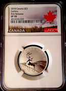 2018 3 1/4+ Oz Canada Caribou Ngc Sp 70 First Releases Perfect Specimen - Rare