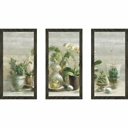 Greenhouse Orchids On Wood V2 Framed Acrylic Wall Art Set Extra Large