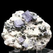 Natural Clear Purple Fluorite And Arsenopyrite Crystal Cluster Mineral Specimen
