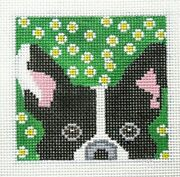Kcn Designers Boston Terrier Square Ornament Handpainted Needlepoint Canvas