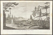 Cook Voyages - View, Island Of Pines. 2-55, 1785 South Pole Original Engraving