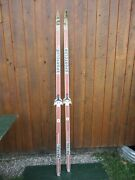 Nice Old Vintage 81 Snow Skis Have Gray Red Blue Finish Great Decoration
