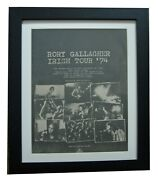 Rory Gallagher+irish Tour 74+original 1974 Poster Ad+framed+express Global Ship