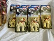 Ty Maple The Bear Beanie Baby With Errors Lot Of 6