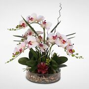 Silk Phalaenopsis Cream Pink Orchids In A Glass Bowl With