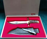 🗡️ Vintage Case Xx 100th Anniversary 1898-1998 Collectible Big Stag Bowie Knife