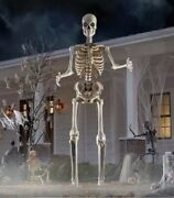 12 Ft Foot Giant Skeleton W/ Animated Lcd Eyes Halloween Prop Home Depot