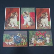Set Of 5 Vintage Kitten Cat Postcards Stf Printed In Switzerland Fuzzy Floral